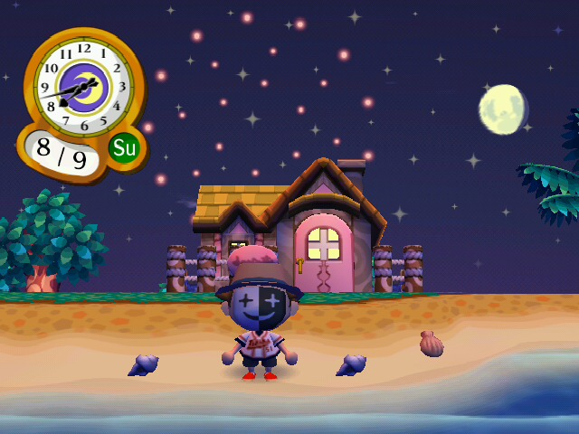 In Animal Crossing Wild World, you have to have bought or sold a certain